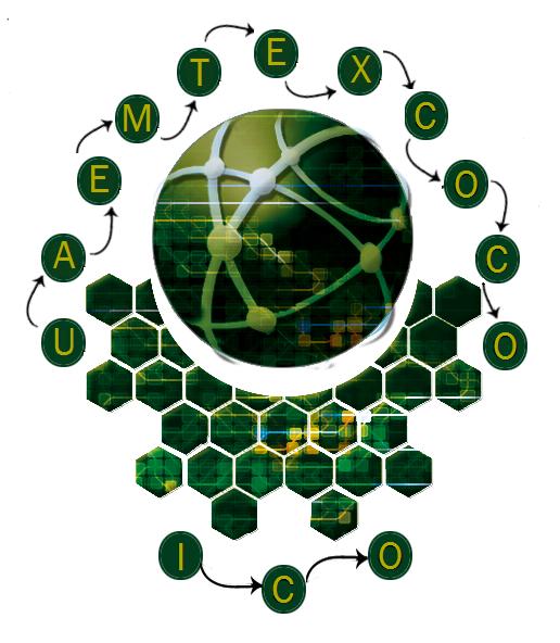ICO- Texcoco